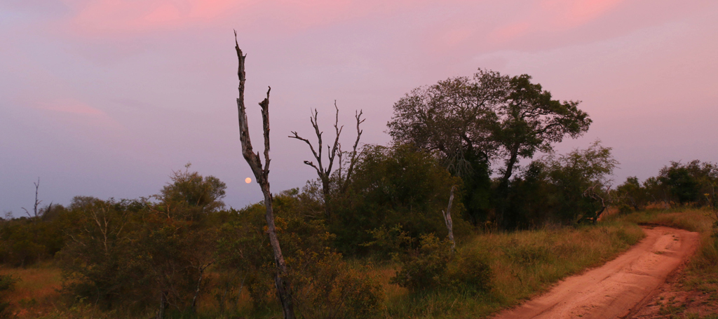 sabi sabi earth lodge bush sunset moonrise