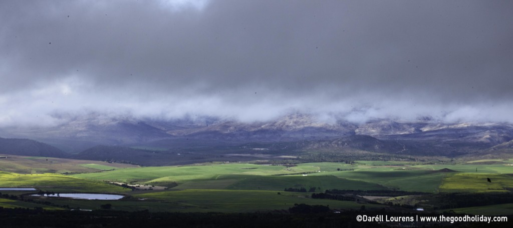 Overberg Canola Fields Howhoek Pass Travel