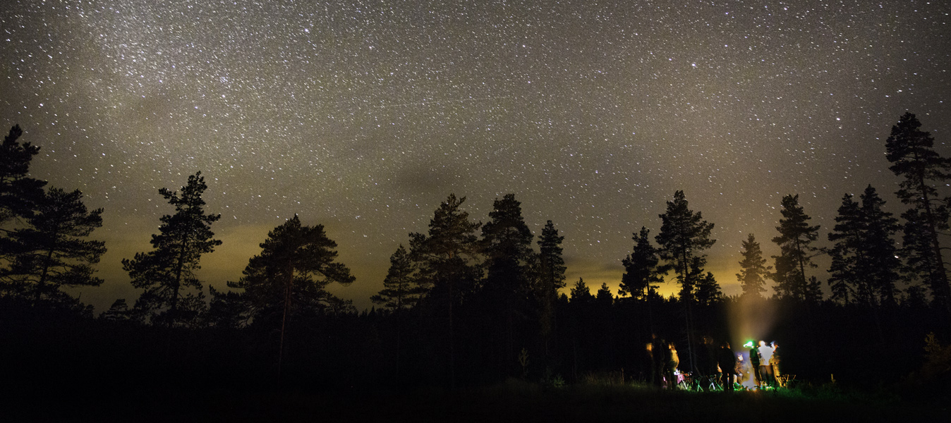 Wild Sweden Stars at night