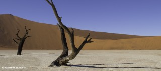 Little Kulala Dead Vlei Desert Hike Wilderness Safaris