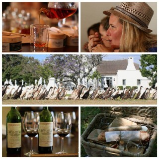 A VERGENOEGD DAY IN STELLENBOSCH