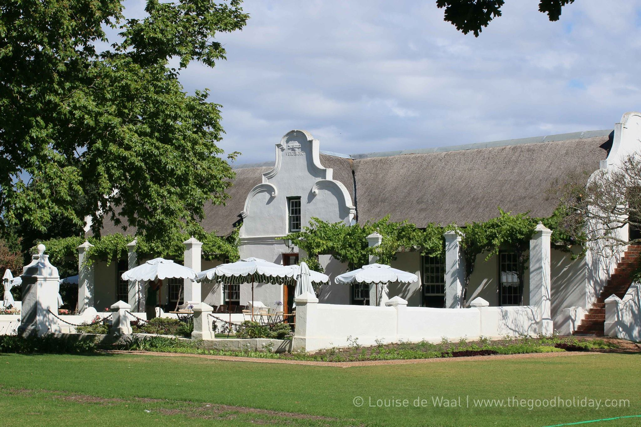 Vergenoegd Wine Estate Stellenbosch