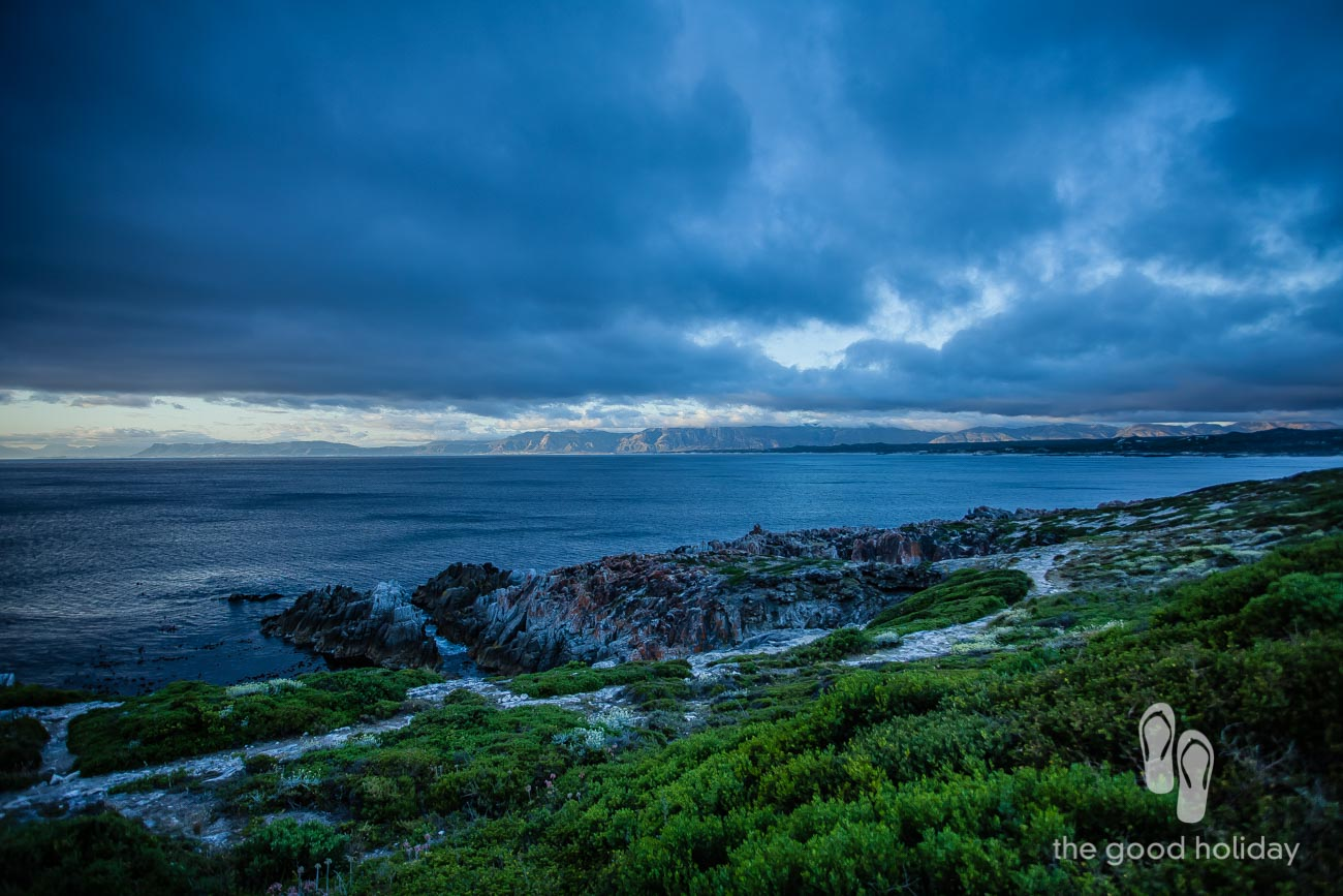 Grootbos View of Overstand